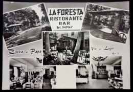 LA FORESTA RISTORANTE BAR - ROCCA DI PAPA (RM) - Pubblicitari
