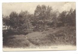 Carte Postale - NIL SAINT VINCENT - Ecole En Plein Air - Les Landes - CPA  // - Walhain