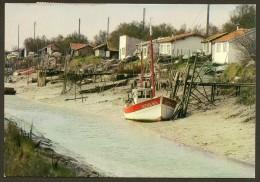 MARENNES La Cayenne Et Ses Etablissements Ostreicoles (IRIS Théojac) Charente Maritime (17) - Marennes