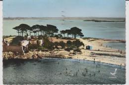 Finistère :   SAINT  POL  De  LEON  1971 - Saint-Pol-de-Léon