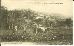 CPA  Fumades Les Bains, Le Village D'Arlinde, Boeufs Au Labour 11177 - Other Municipalities