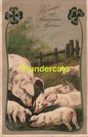CPA  EN RELIEF GAUFREE COCHON ** EMBOSSED CARD PIG PIGS ** PFB 6409 - Cochons