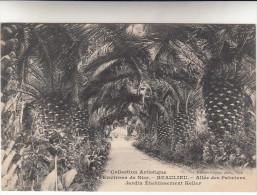 CPA Beaulieu Allée Des Palmiers, Jardin Etablissement Keller (pk15298) - Beaulieu-sur-Mer