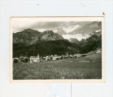 Cima SAPPADA M.1292-NV - Belluno