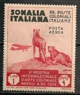 Timbres - Italie - Colonies Et Possessions - Somalie - POSTA  AEREA - 1934 - 1 Lire - - Somalie