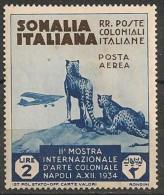 Timbres - Italie - Colonies Et Possessions - Somalie - POSTA  AEREA - 1934 - 2 Lire - - Somalie