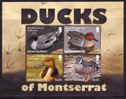 Montserrat Ducks Sheetlet Of 4 Mint NH               12-5-14 - Montserrat