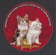 Etiquette De Fromage Camembert   - Les Patapons (chats)  -  Coop. Agric. Lait. De Champigny Sur Veude ( 37) - Käse