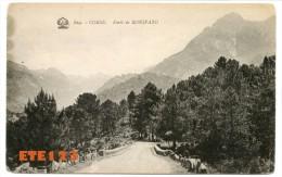 Corse - Foret De BONIFATO - Prés De Calvi - Calvi
