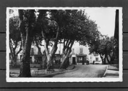 Le Luc - Place De La Liberté - Le Luc