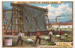 Chromo Liebig - Le Sel - Batiment De Graduation Pour La Concentration Des Eaux Salines - Kôsen Prusse - Dépliants Touristiques