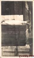 PHOTO ANCIENNE : PECHE AU PAYS-BAS HOLLAND FISH MARKET - Visvangst