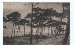 CPA ARCACHON Forêt Et Plage Du Moulleau - Arcachon