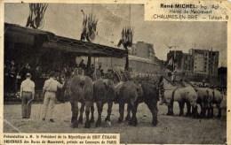 77- CHAUMES-en-BRIE-Haras De Maurevert-8 Etalons Ardennais,,,,Chevaux.-en L´état - Pferde