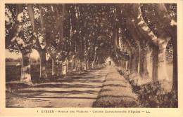 CPA Eysses Avenue Des Platanes E529 - Frankreich