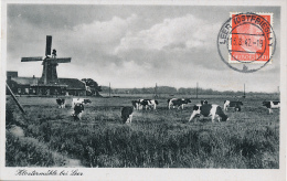 LEER - 1942 , Klostermühle - Germany