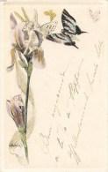 ILLUSTRATEUR G. BUSSIERE ART NOUVEAU FLEURS ANGE PAPILLONS 1900 - Illustratoren & Fotografen