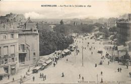 MONTPELLIER - La Place De La Comédie En 1892 - Montpellier