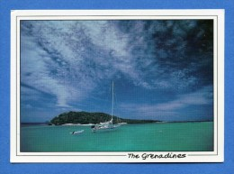 Iles Grenadines - All Alone In The Tobago Cays - Saint-Vincent-et-les Grenadines
