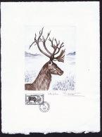 1987  Le Renne  Lithographie Grand Format Par Le Graveur Jacques Gombet  25 X 332 Cm Tirage Limité - Geschnitten, Drukprobe Und Abarten