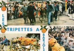 VAR 83 BARJOLS FÊTE DE LA SAINT MARCEL FÊTE DES TRIPETTES - Barjols
