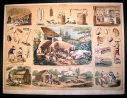STRASBOURG, BERGER-LEVRAULT. LE COCHON. Dessiné Par BELIN &  BETHMONT. - Old Paper