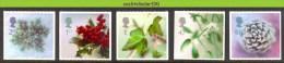 Nbd0262 KERSTMIS FLORA KLIMOP KERSTBOOM HULST PINEAPPLE CHRISTMAS TREE GREAT BRITAIN 2002 PF/MNH - Plants