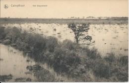 CALMPTHOUT HET STAPPERSVEN - Kalmthout