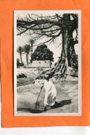 BURKINA FASO / HAUTE VOLTA   1950    BODO DIOULASSO  COIN  EXTERIEUR DE LA VILLE    CIRC  NON  EDITEUR - Burkina Faso