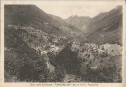 RONCOBELLO(BERGAMO) ALTA VALLE BREMBANA -PANORAMA -FG - Bergamo