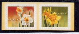 CANADA 2005, # 2092-3, DAFFODILS PAIR,   FROM QUARTELY PACK  MNH, From Quartely Pack - Carnets