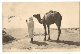 S1626  -457a - Désert Du Sahara - La Prière Du Chamelier - Algérie