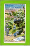 Chocolat Suchard- N° 3- Prunes Reine Claude -le Verger - Suchard