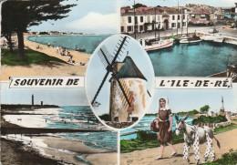ILE DE RE -17- LA FLOTTE LA PLAGE ST MARTIN LE PORT VIEUX MOULIN - PHARE DES BALEINES - L'ANE EN CULOTTE - Ile De Ré