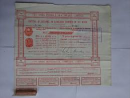 ACTION BOURSE  THE SPIES PETROLEUM COMPAGNY LIMITED 1924  AVEC COUPONS - Afrique