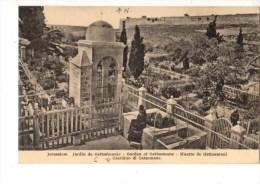 C P A------ASIE---PALESTINE-- JERUSALEM--------jardin De Gethsémanie---voir 2 Scans - Palestine