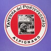 HOTEL ALBERGO PENSIONE NO PONTEVECCHIO ALPIGNANO ITALIA ITALY TAG STICKER DECAL LUGGAGE LABEL ETIQUETTE AUFKLEBER - Etiquettes D'hotels
