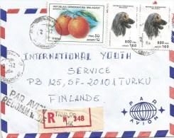 Madagascar 1994 Tananarive Orange Citrus Afghan Dog Registered Cover - Honden
