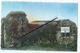 CPSM - Saint Valéry Sur Somme - Ruines Des Remparts - Saint Valery Sur Somme