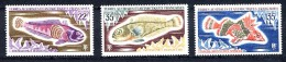 TAAF 1972, POISSONS,3 Valeurs, Neufs / Mint. R2365 - Terre Australi E Antartiche Francesi (TAAF)