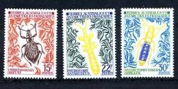 TAAF 1973, INSECTES, 3 Valeurs, Neufs / Mint. R2367 - Terre Australi E Antartiche Francesi (TAAF)