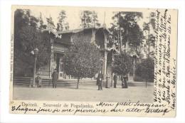 10792 - Dwinsk. Souvenir De Poguljanka - Lituanie