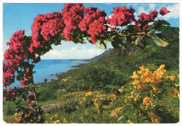 SEYCHELLES - EAST COAST OF MAHE´ / THEMATIC STAMPS-BIRD - Seychelles