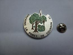Superbe Big Pin's , Sauvons La Forêt De Coubron , Seine Saint Denis , Nature , Arbre , écologie - Villes