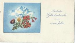 Petite Carte De Voeux/ Circulée/Edelweiss Et Montagne/ Vers 1950   CVE56 - Nieuwjaar