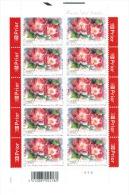 Gentse Floraliën. Floralies Gantoises.  Rosa  Old Master - Feuilles Complètes