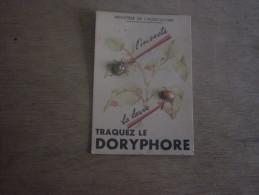TRAQUEZ  LE  DORYPHORE - CARTON PUBLICITAIRE - Pubblicitari
