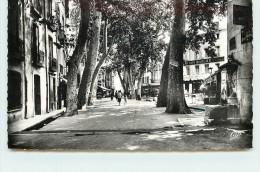 CERET - Boulevard Maréchal Joffre. - Ceret