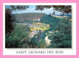 CPM    SAINT LEONARD DES BOIS - Saint Leonard Des Bois