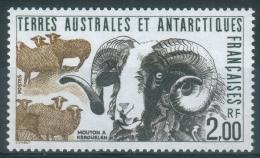French Antarctic (FSAT), Kerguelen Islands Sheep, 1989, MNH VF - Nuovi